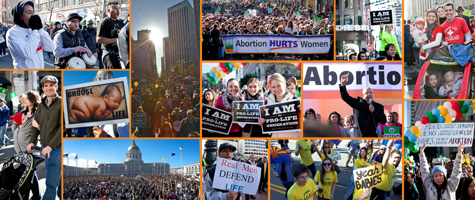 Walk for Life 2014 Collage